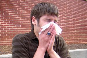 Symptome Schweinegrippe